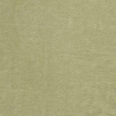 Cotton Velvet Sea Green