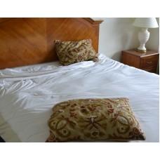 Crewel Pillow Art Nouveau Desert Sand Silk Organza Standard20x26